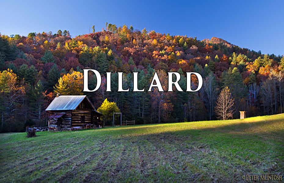 Sell and Search Homes, Houses, Land, and Commercial Real Estate for Sale Dillard Ga 30537 on ChipDurpo.com, Realtor Chip Durpo, Broker/Agent Scaly Mountain NC 28775, Sell this House, Market your Home