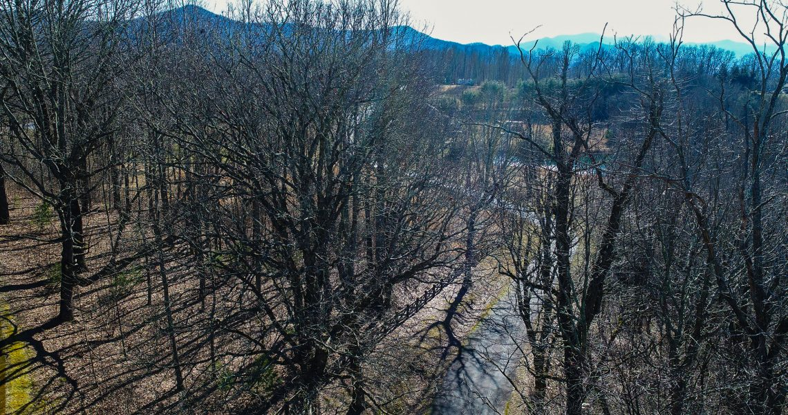 Lot-18-Thomas-Knob - Selling Real Estate Chip Durpo RE/MAX Agents Realty