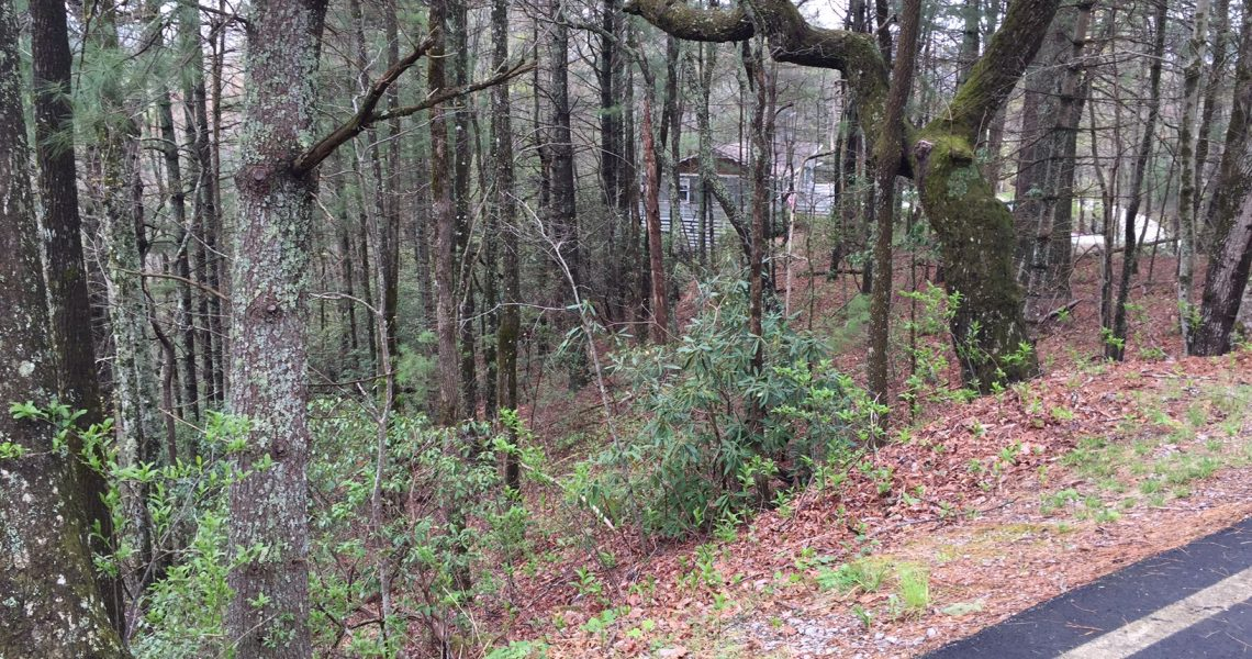 485-E-Sugarbush-Sky-Valley-Ga - IMG_4397.jpg | Offered by Chip Durpo RE/MAX Agents Realty