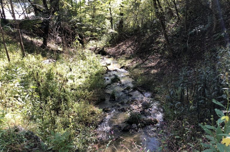 lot-2-mountain-brook-trails - Selling Real Estate Chip Durpo RE/MAX Agents Realty