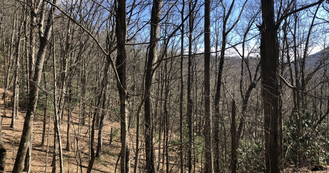 1405-rabun-branch - Selling Real Estate Chip Durpo RE/MAX Agents Realty